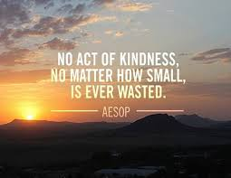 volunteer_Florida_no_act_of_kindness_is_ever_wasted