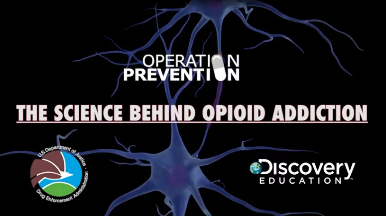 The Science Behind Opioid Addiction